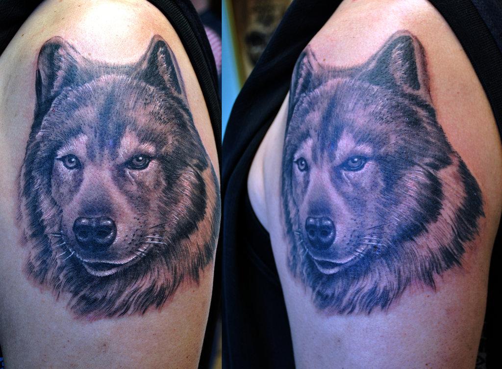 Wolf tattoo realistic
