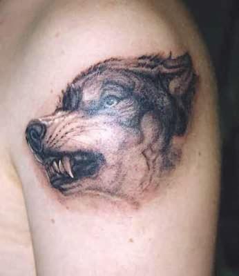 Wolf head realistic tattoo on shoulder
