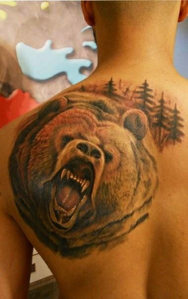 acquerello colorato testa di orso aggressivo tatuaggio sulla schiena