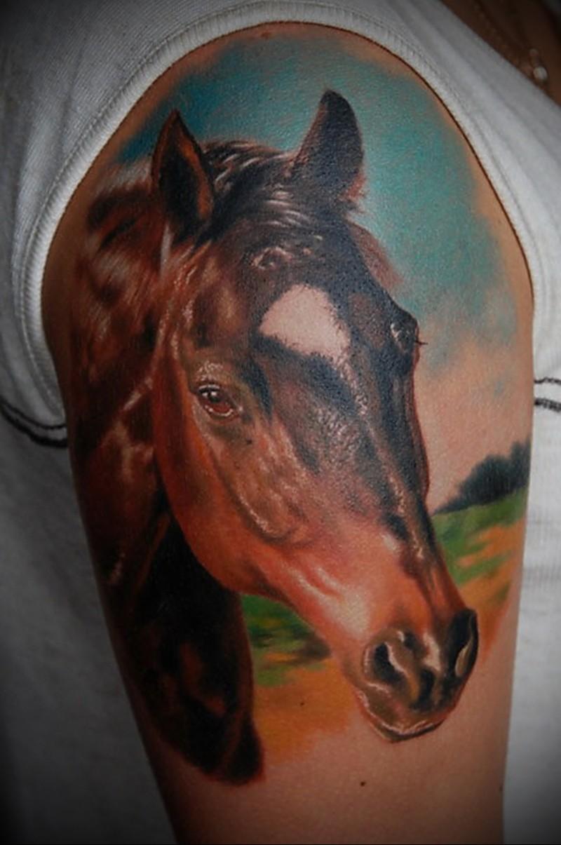 Wonderful horse head tattoo on half sleeve