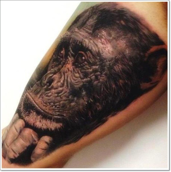 Wonderful realistic monkey tattoo on arm